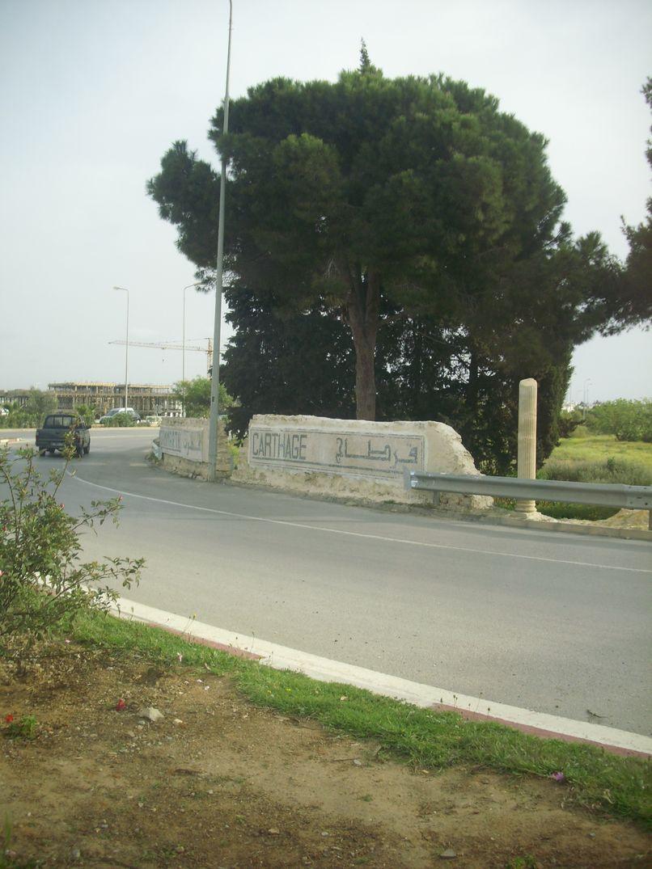 Tunis3